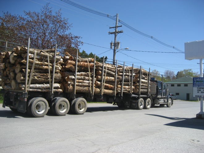 Logging truck in Rangeley